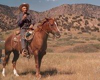 Legendary lawman & rancher Ralph Morrow ready to ride; near east property fence, 1960s